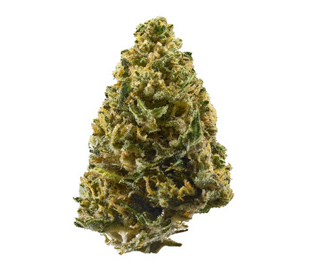 Northern Lights Strain Review